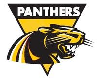 Thumb panthers logo